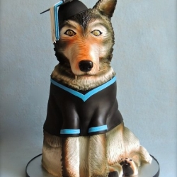 Graduation Wolf